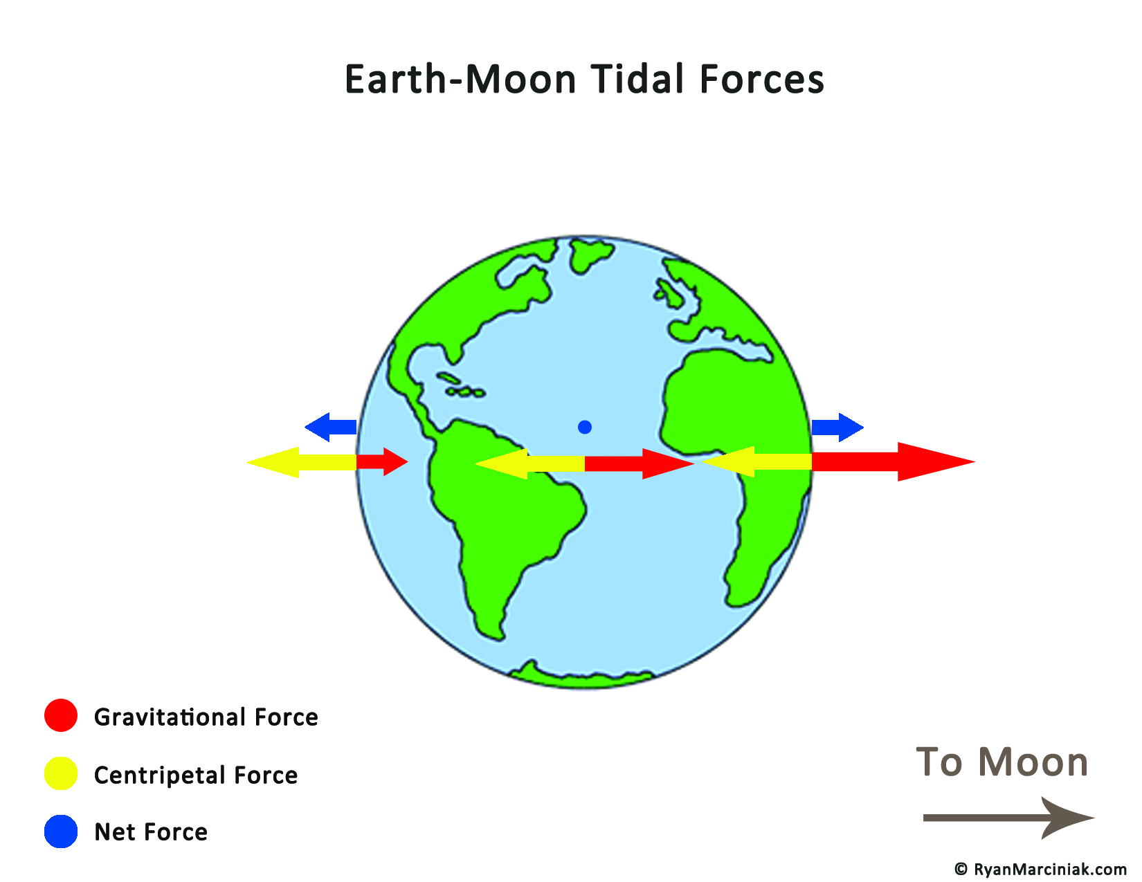 Tidal Force Earth Moon