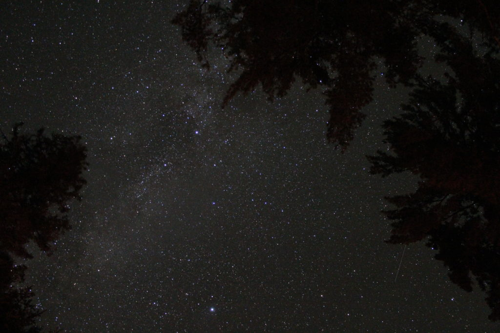 Lyra along the Milky Way - 25 sec exposure at ISO 6400